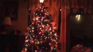 Sexy Christmas