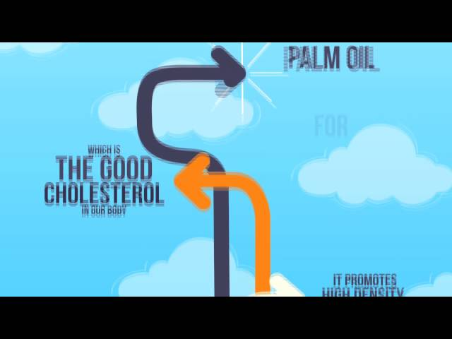 How Can Palm Oil Be Good for Health?