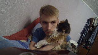 VLOG 128 - Кошка мешает снимать влоги