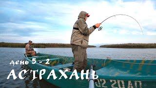 Астрахань День 5 2 ЖОР КРУПНОЙ РЫБЫ Рыбалка мечта Рыбалка на спиннинг в Астрахани