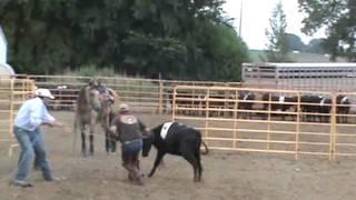 low stress cattle handling....