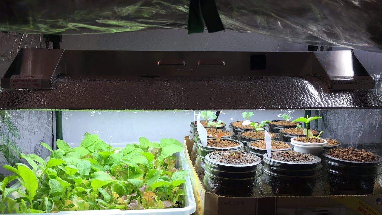 T5 Grow Light 2ft 4lamps Dl824 Ho Fluorescent Hydroponic