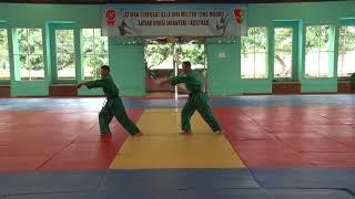 Download Mp3 Latihan Dasar Bela Diri Militer Yong Moodo