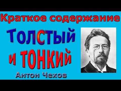 Краткое содержание Толстый и Тонкий, Чехов