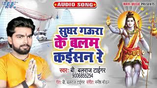 सुघर गौरा के बालम कइसन रे    B Balraj Tiger    Sughar Gaura Ke Balam Kaisan Re    BOLBAM 2021