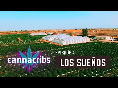 Largest Outdoor Cannabis Farm in World (Canna Cribs Episode 4: Los Sueños Farms)