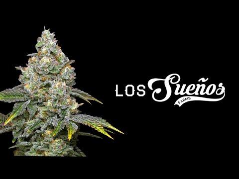Largest Outdoor Cannabis Farm in World (Canna Cribs Episode 4: Los Sueños Farms)