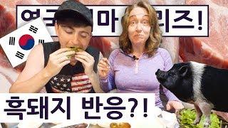영국엄마가 흑돼지를 처음 드셔 보신 순간!?! !! 영국 엄마의 한국 즐기기 Day+9.2!! British Mum Series 2 Day 9.2!!