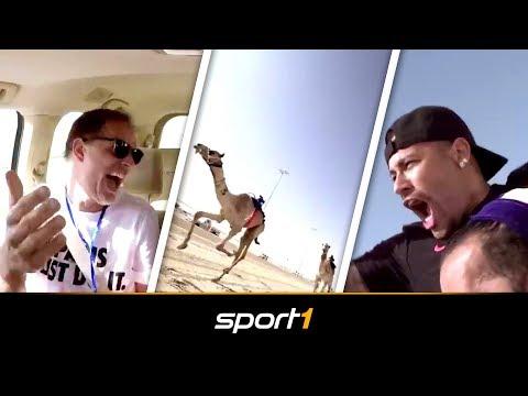 Verrücktes Kamel-Rennen: Tuchel und Neymar sorgen für Stimmung | SPORT1