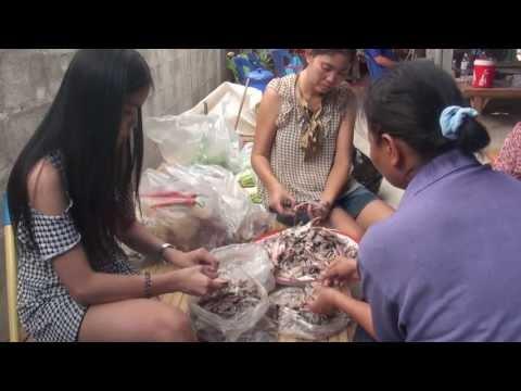 ม้างหัวปลาทู บ้านดอนเงิน ตำบลบ้านหว้า อำเภอเมือง จังหวัดขอนแก่น