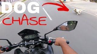 kawasaki z800 w t sc project exhaust   short city ride   dog scare
