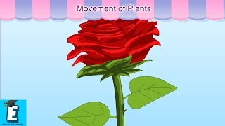 Movement of Plants Learn for Children and Kids | EDUKID Learning