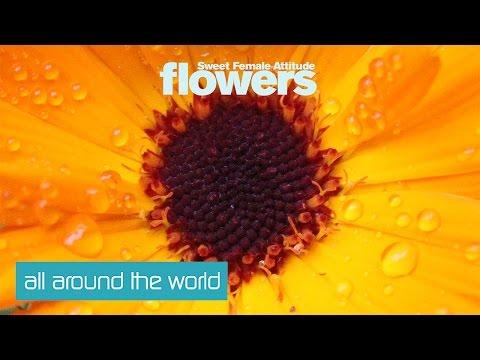 Sweet Female Attitude - Flowers (ANOTR Remix) [Clip]