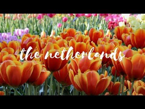 The Netherlands Notebook