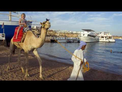 Michael Portillo - Tips for Travellers to Egypt