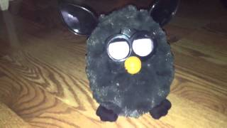 Changing Furby's Personality: The Talkative Personality