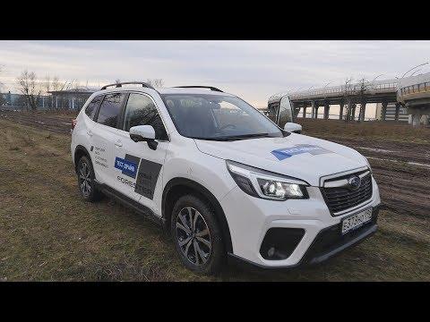 Subaru Forester - Кто не умеет ездить купит Kodiaq