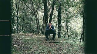 Fernando Falks - Florescer