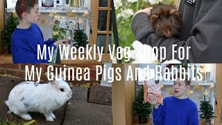 My Huge Weekly Veg Shop For My Guinea Pigs And Rabbits!