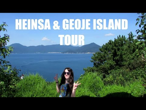 Exploring Wilderness in Oedo Island 🌴 | UNESCO World Heritage Tour in South Korea