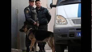 Полиция задержала подозреваемого в стрельбе из автомата в центре Москвы
