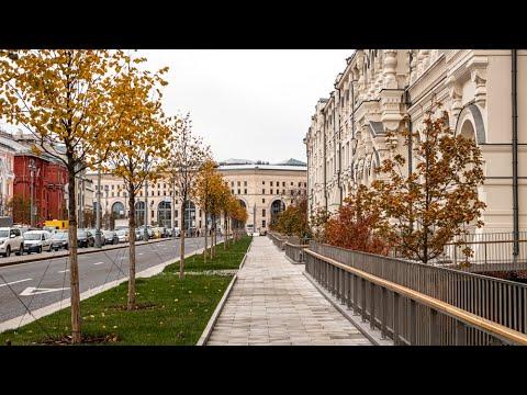 Ландшафтный дизайн в городе