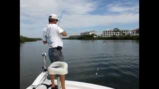 Fishing Lemon Bay Englewood Florida