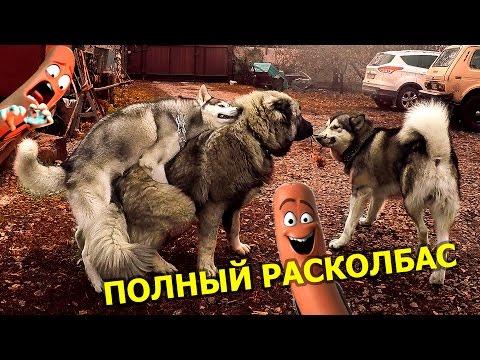 ПОЛНЫЙ РАСКОЛБАС 18+ / Sausage party 18+