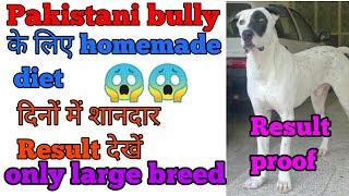 Pakistani bully के लिए diet plan   दिनों में कुत्ते का weight gain किजिए  बस इस बात का ध्यान रखे