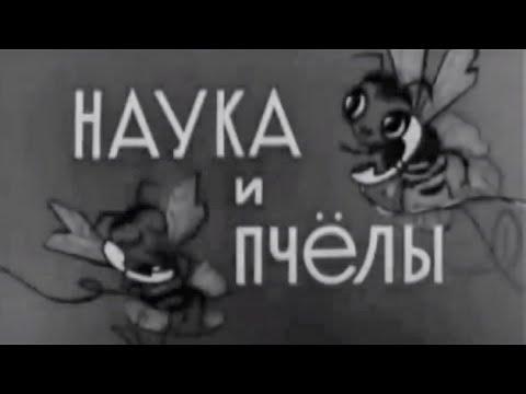 Наука и пчёлы. Фильм СССР