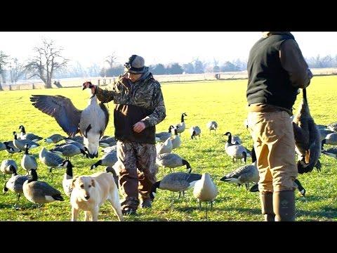 Goose Hunting BIG HONKERS 2017 - Last Day Of The Season