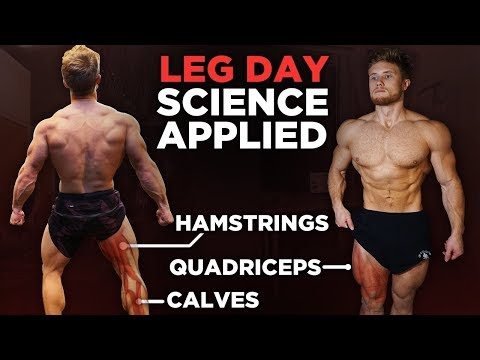 the-most-effective-science-based-leg-workout-|-science-applied-(12-studies)