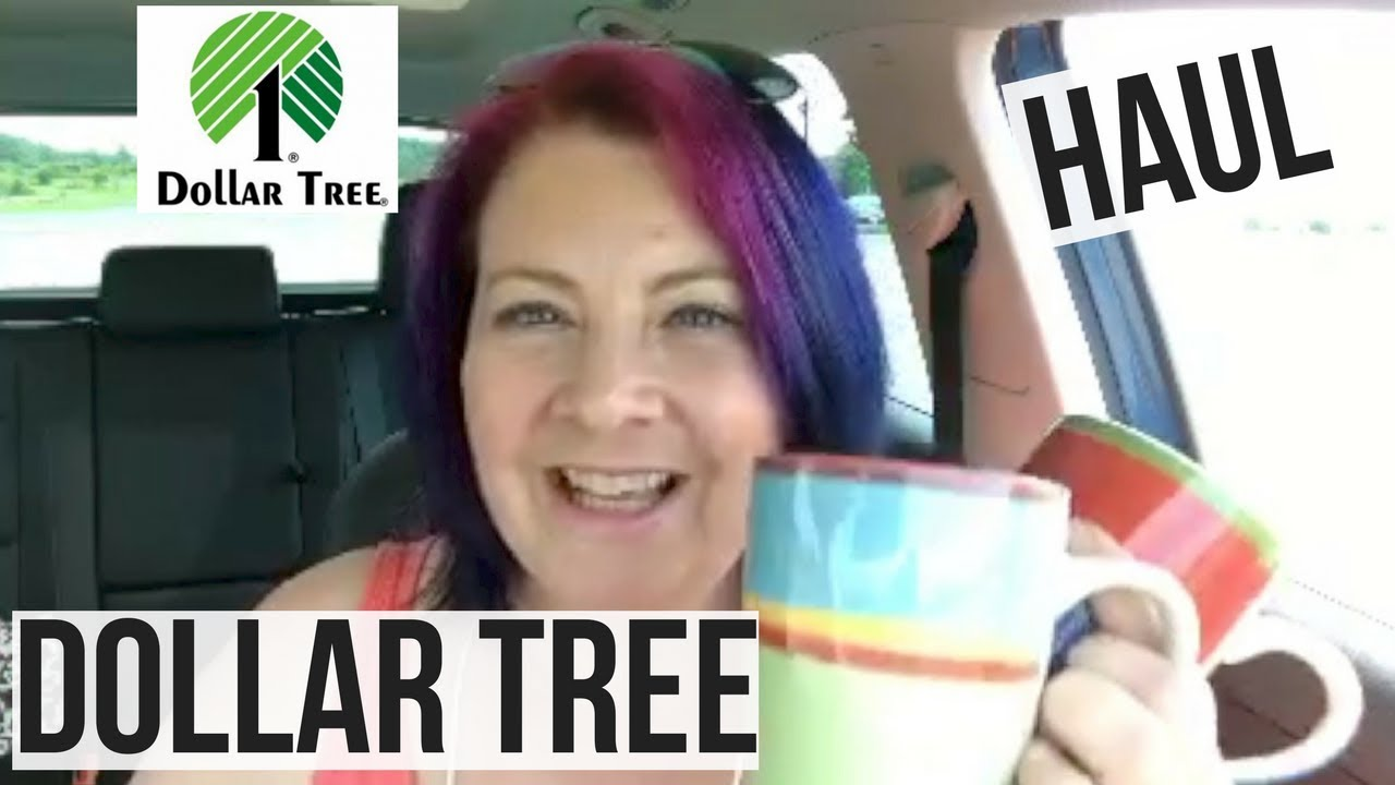 dollar tree haul august 2017 live haul replay and fvcking coloring book flip through - Dollar Tree Coloring Books