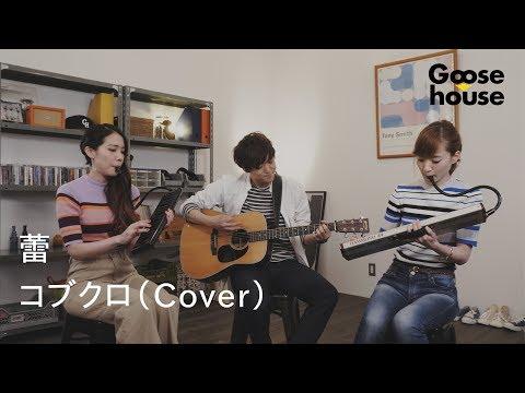 蕾/コブクロ(Cover)