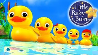 Numbers Song | Counting Five Little Ducks | Nursery Rhymes | Original Song By LittleBabyBum