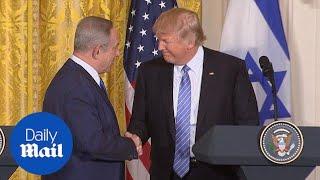 Netanyahu tells Trump US has no better ally than Israel - Daily Mail