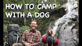 How to camp with a dog. Solo hiking and canoeing in the Ontario wilderness.