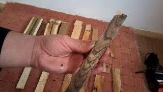 scoarță de stejar și vedere