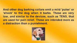 Dog Barking Collars