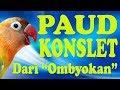 Cara Perawatan Lovebird Paud Konslet  Mp3 - Mp4 Download