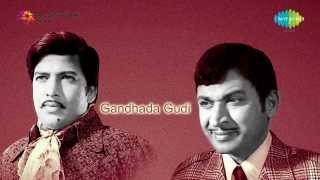 Gandhada Gudi  | Ellu Hogalla song