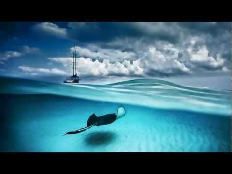 Ocean Waves ~ Natural Sounds