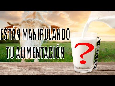 Manipulación en la alimentación - La leche