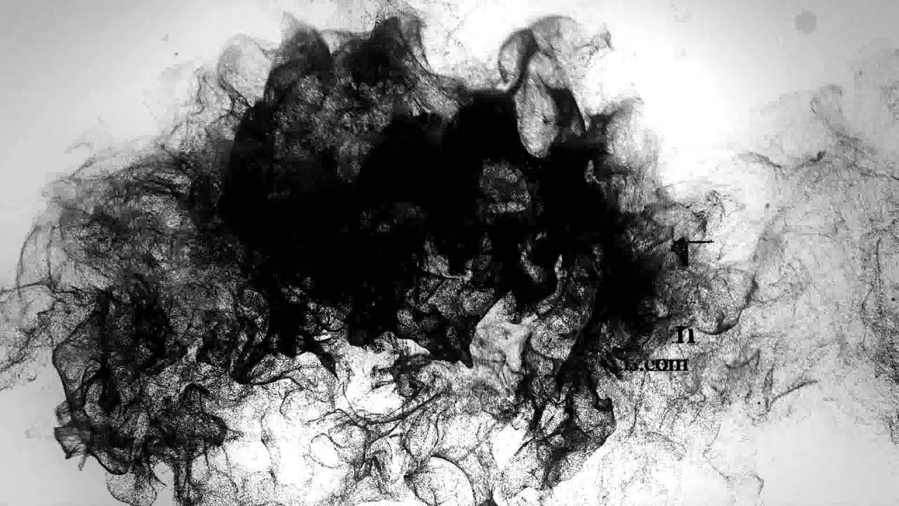 Dark Crow Wallpaper