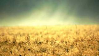 Soundflower - back 2 u