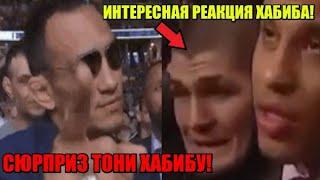 СЮРПРИЗ ХАБИБУ ОТ ТОНИ ФЕРГЮСОНА - готовит нежданчик в бою! / Интересная реакция Нурмагомедова!