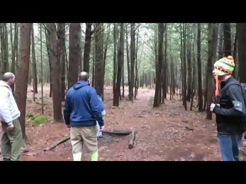 Disc Golf - Helpful tips on tee pad stance.