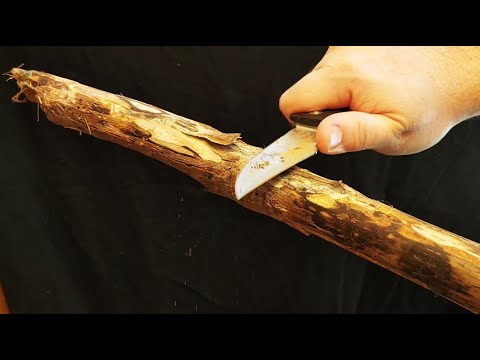 I Made A Hiking Stick From Fallen Deadwood