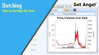 Betfair trading strategies - Win by backing the loser