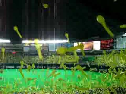 Torcida Fukuoka SoftBank Hawks - Baseball
